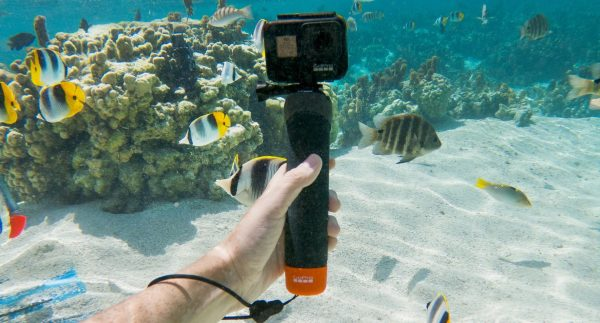 Buy the GoPro The Handler Floating Hand Grip at Reagan Wireless